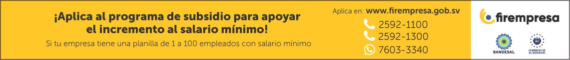 Firempresa - Salario Minimo